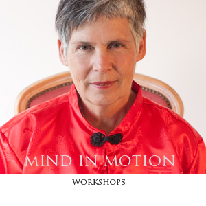 Mind in Motion fusion of Qi Gong, Tai Chi and Mindfulness Meditation techniques